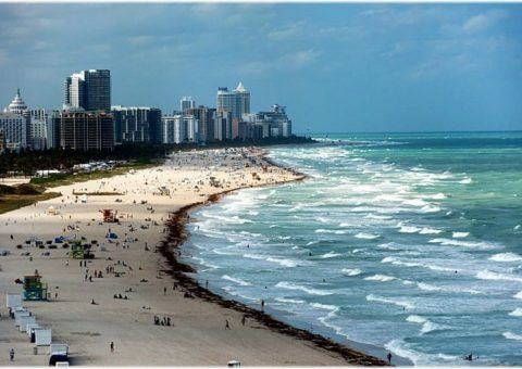 Miami Beach pic via Trover.com.