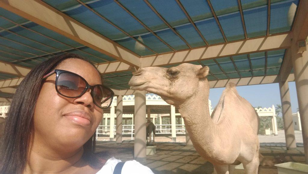 Camel selfie :-)
